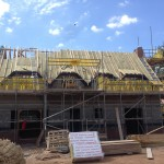 Roof Before a Re-Thatch