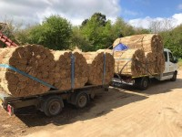 Thatch Delivery Organisation