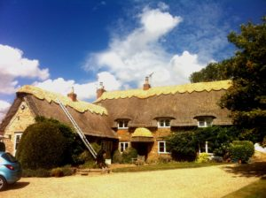 How Long Should A Thatched Roof Last?